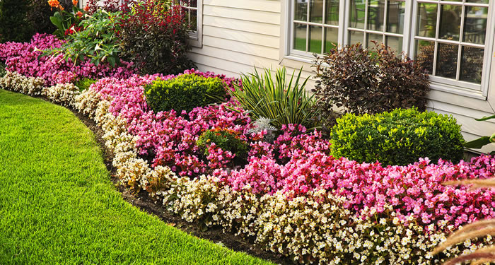 Garden and Flower Bed Maintenance Grand Valley To Mississauga Ontario.