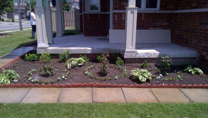Garden Bed Design and Flower Selection