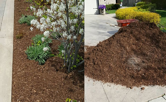 Garden Bed Mulch Spreading