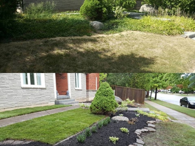 Before And After Garden Cleanup and Construction