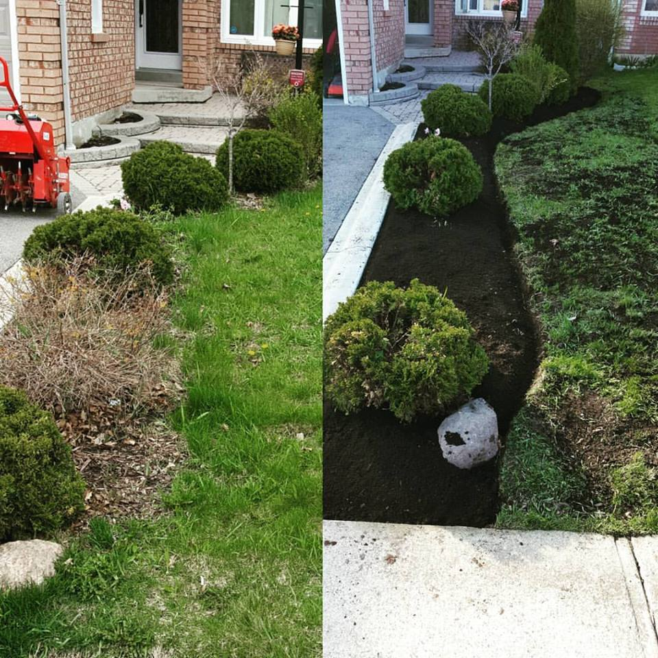 Before and After Garden Cleanup