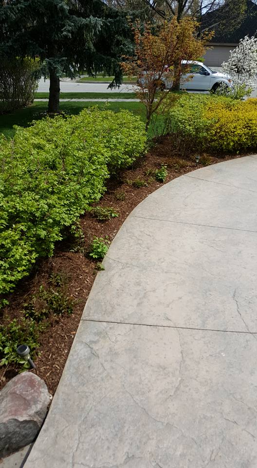 A Low Maintenance Garden Warrior Landscaping Designed and Built