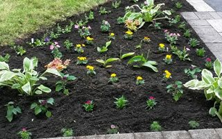 Gardening Services Grand valley, Orangeville and Mississauga.