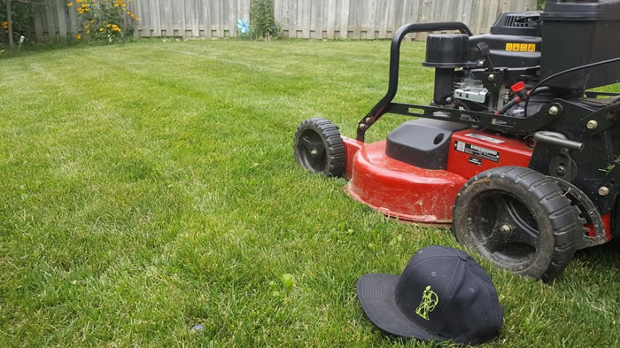 Lawn Care Services in Grand Valley and Mississauga Ontario.